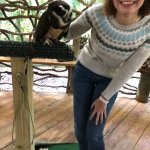 Foto de Zoological Wildlife Foundation