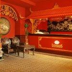 Photo de Hotel Lothus