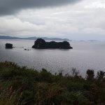 Foto de Hahei Explorer Cathedral Cove Boat Tour