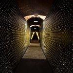Pere Ventura winery