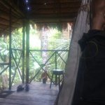 Photo of Allpahuayo Mishana National Reserve