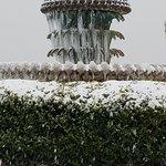 Frozen pineapple water fountain on Charleston waterfront!