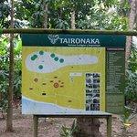 Photo de Taironaka Turismo Ecologico y Arqueologia