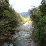 祖谷のかずら橋 (徳島県 三好市)