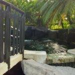 Zdjęcie The Royal Corin Thermal Water Spa & Resort