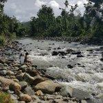 Foto de Carabali Rainforest Park