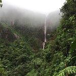 ภาพถ่ายของ Carbet Falls (Les Chutes du Carbet)
