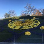 Foto de Flower Clock
