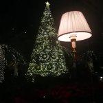 Bilde fra The Ritz-Carlton, Bahrain