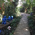Photo de Hotel La Palapa Eco Lodge Resort