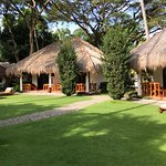 Photo of Pura Vida Beach & Dive Resort Restaurant and Bar