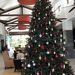 Xmas tree in the foyer