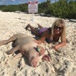 Φωτογραφία: Pig Beach - Big Major Cay
