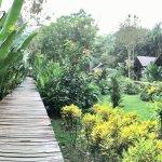 Photo of Khao Sok Cabana Resort