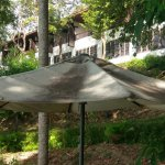 Would you like to shade under some mouldy umbrella?