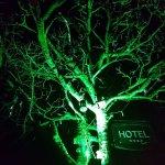 Φωτογραφία: The Twelve Hotel
