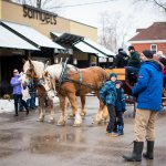 Maple Fest Horse Drawn Sleigh Rides