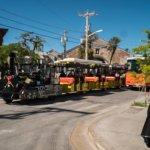 Greene Street with Key West Aloe