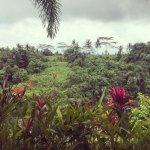 Foto de Bidadari Private Villas & Retreat