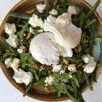 Superb green salad