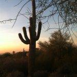 Photo de Phoenix Marriott Tempe at The Buttes
