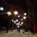 Snowflake pathway