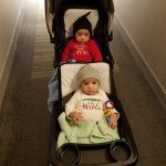 Taking our twin boys out in their stroller!