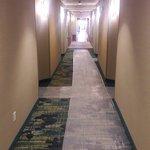 Foto de SpringHill Suites Tulsa