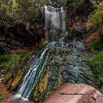 Photo de Waitakere Ranges