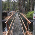 One Tree Bridge照片