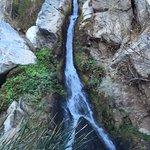 Darwin Falls Foto