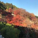 Katsuo-ji Temple Foto