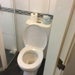 Toilet needs stronger cleaner to stop the smell of urine