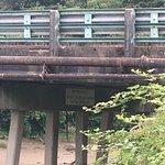 underside of Young Street bridge