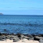 صورة فوتوغرافية لـ Isla Daphne Mayor