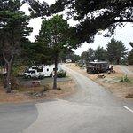 Honey Bear By The Sea, RV Resort & Campground Foto