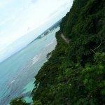 Photo of Rainforest Adventures Jamaica