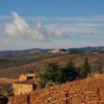 Photo de Castello di Brolio