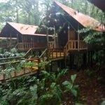 Rana Roja Lodge Picture