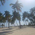 Photo de Aqua Scuba Belize