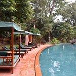La piscine qui traverse, tout en longueur, le jardin