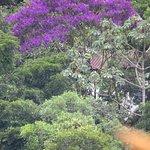Vista chalé Patagônia