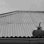 Pumpkin on the roof