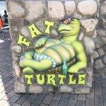 Foto de Fat Turtle