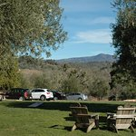 View from the picnic area at the winery.