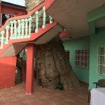 Photo of Baobab Holiday Resort