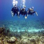 Photo de Akumal Dive Shop
