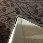 Foto de Drury Inn & Suites Atlanta Airport
