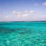 Reef location - where the shallows meet the deep blue