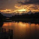 Photo de Jungle Land Panama Floating Lodge